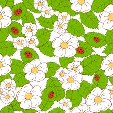 Floral Pattern With Ladybugs Stock Image