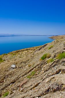Free Dead Sea Royalty Free Stock Image - 13874866
