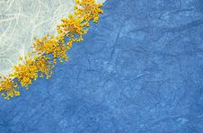 Free Yellow Lace Flower Background Royalty Free Stock Photography - 13875347