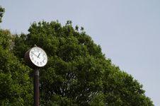 Free Park Clock Royalty Free Stock Photos - 13875618