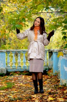 Free Autumn Time Royalty Free Stock Photography - 13875687