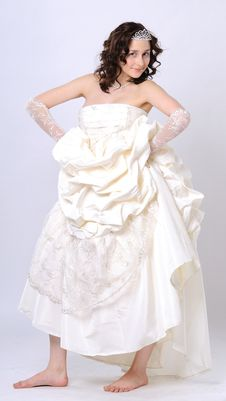 Free Wedding Portrait Royalty Free Stock Image - 13876006
