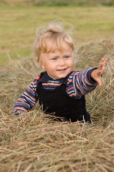 Free Little Boy On The Hay Stock Images - 13876014