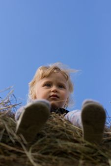 Free Little Boy Sitting On The Hay Stock Image - 13876021