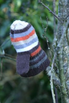 Lost Childs Glove Royalty Free Stock Images