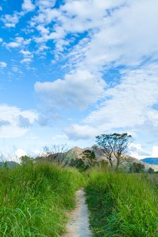 Free The Wetland And Countryside Of Hong Kong Stock Images - 13877084