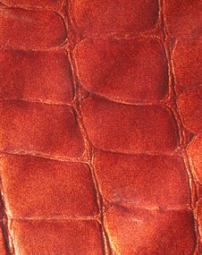 Free Brown Leather Background Stock Photos - 13877223