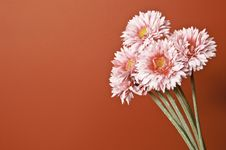 Free A Bouquet Of Flowers On An Orange Background Royalty Free Stock Images - 13879519
