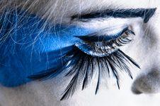 Free Eye And Eyelashes Royalty Free Stock Photo - 13879615