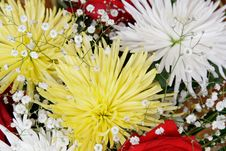 Free Bouquet Royalty Free Stock Image - 13879626