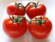 Free Ripe Tomatoes On The Vine Royalty Free Stock Photo - 13879835