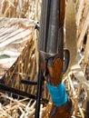 Free Shotgun Royalty Free Stock Photography - 13882817