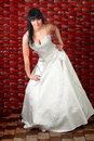 Free Bride Royalty Free Stock Photos - 13885528