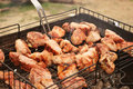 Free Pork Barbecue Royalty Free Stock Photo - 13889975