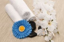 Free Spa Objects Royalty Free Stock Photography - 13881877