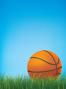 Free Basketball Ball Stock Photo - 13883230