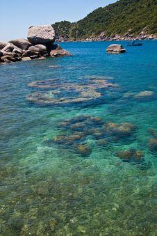 Free Rocks Under Sea Nang-Yuan Royalty Free Stock Photography - 13883357
