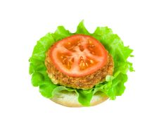 Free Cheeseburger Royalty Free Stock Photography - 13883647