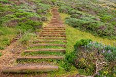 Free Park Stairs Stock Photography - 13884212