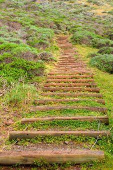 Free Park Stairs Stock Image - 13884281