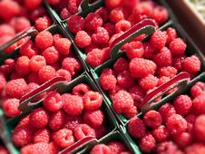Free Raspberries Stock Image - 13885381