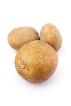 Free Potatoes Stock Photography - 13887312
