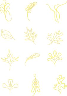 Free Yellow Leafs,spica And Grass Royalty Free Stock Images - 13889249