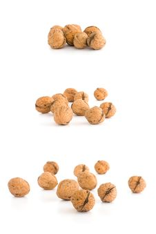 Free Selection Of Walnuts Royalty Free Stock Photo - 13893695