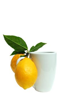 Free Lemons And Mug Royalty Free Stock Photos - 13894118