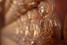 Free Statue Of Buddha Royalty Free Stock Image - 13895706