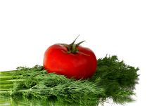 Free Fresh Tomato And Dill Royalty Free Stock Photos - 13899128