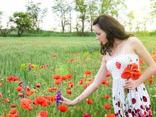 Free Girl With Poppies Royalty Free Stock Image - 13899756