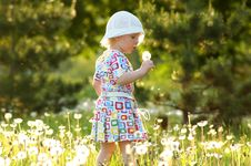 Free Child With Dandelions Stock Photography - 13899962
