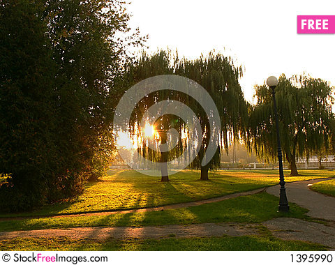Sunset in the park Stock Photo