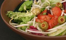 Salad With Choppped Tomatoes Royalty Free Stock Photo