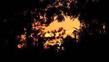 Free Sunset Royalty Free Stock Photo - 1390955