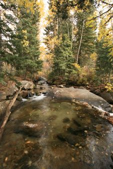 Creek In Fall With Aspens 1 Royalty Free Stock Photography
