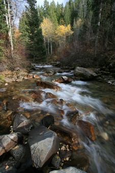 Free Creek In Fall With Aspens 3 Royalty Free Stock Photo - 1391745