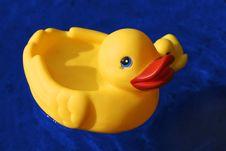 Free Ducks Royalty Free Stock Photo - 1392195