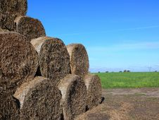 Free Straw Bales Royalty Free Stock Photos - 1393978
