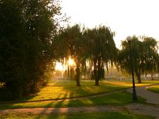 Free Sunset In The Park Stock Photo - 1395990