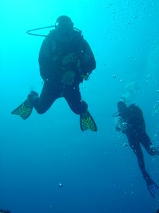 Free Swimming Scuba Divers Royalty Free Stock Image - 1396316