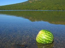 Free Wassermelone Stock Images - 1398104