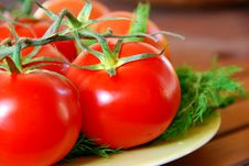 Free Lovely Tomatoes Stock Images - 1398234