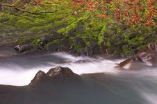 Free Waterfall With The Moss Royalty Free Stock Photography - 1399857