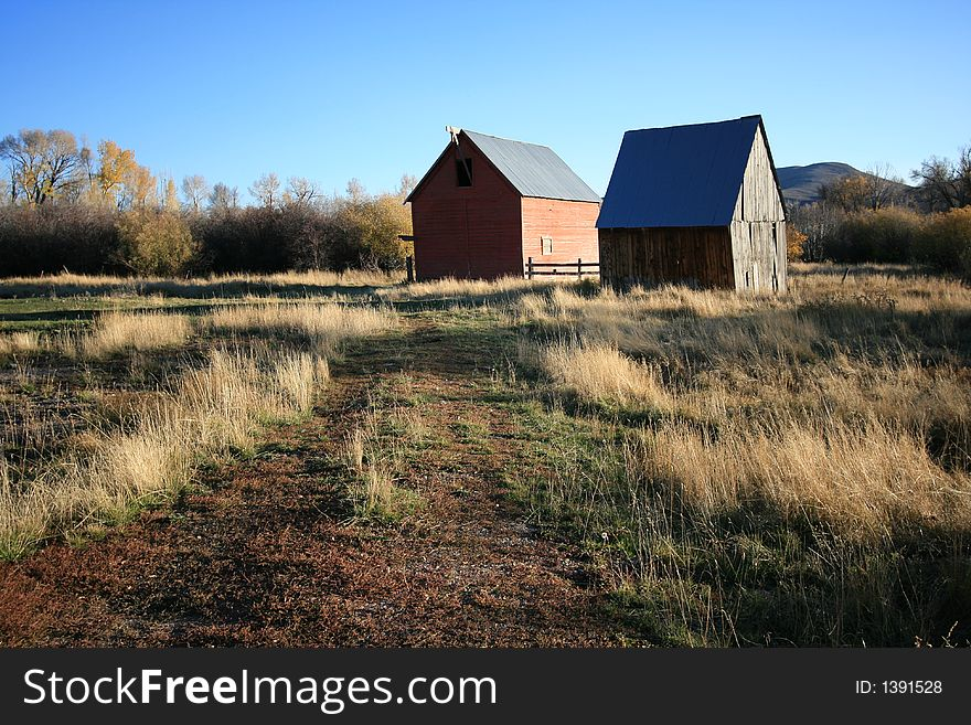 Two barns in a field