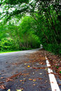 Free Natural Tunnel Road Royalty Free Stock Images - 13902719