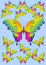 Free Butterfly Stock Photos - 13908243