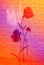 Free Red Poppies On The Canvas. Royalty Free Stock Photography - 13909497