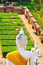 Free Statue Of Buddhas In Temple Wat Chai Mongkol Stock Photo - 13909970